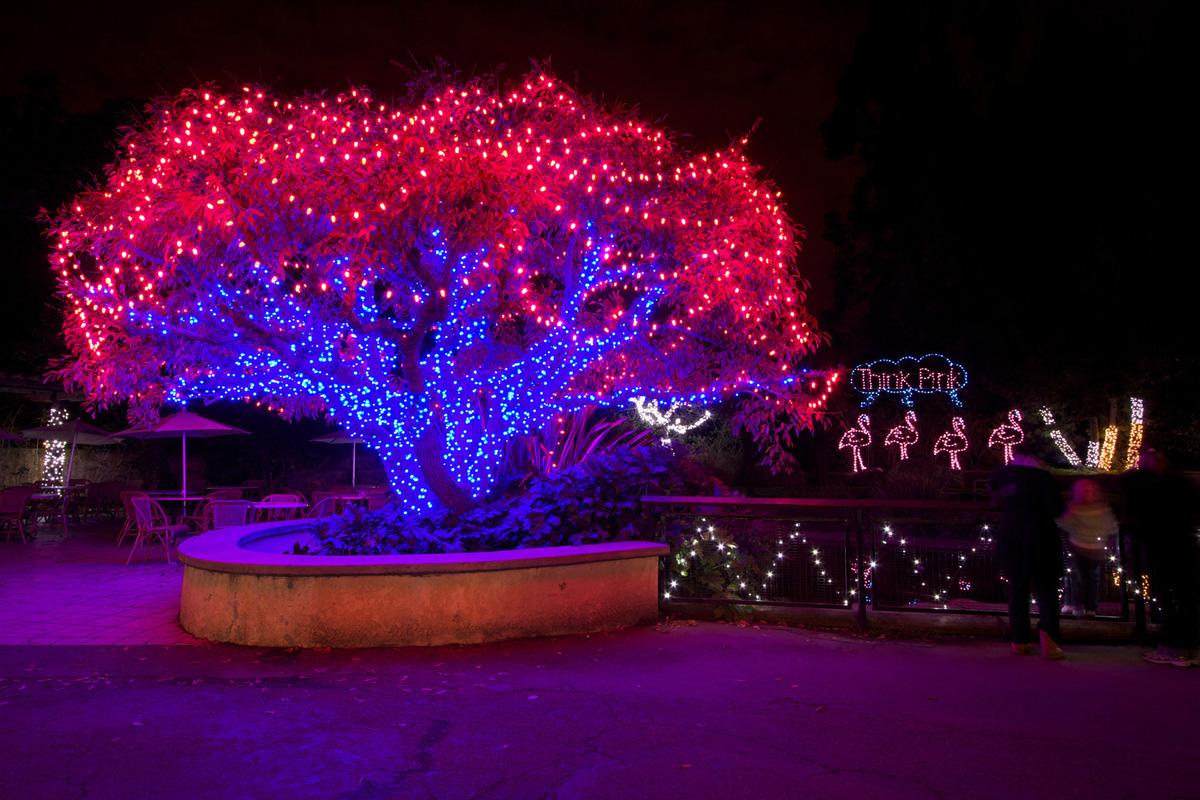 Glow Zoo