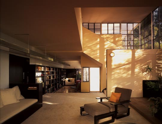 neutra steel house