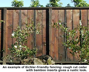 example of rustic fence
